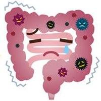 腸の不調と乾癬の関係