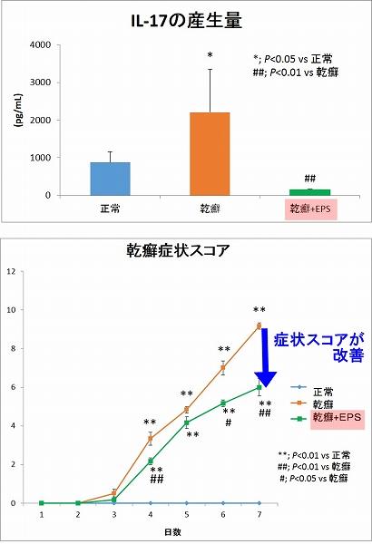 乳酸菌の乾癬改善効果 実験データ